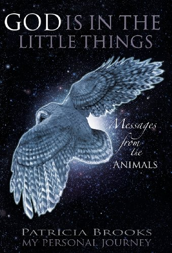 9781452576589: God Is in the Little Things: Messages from the Animals
