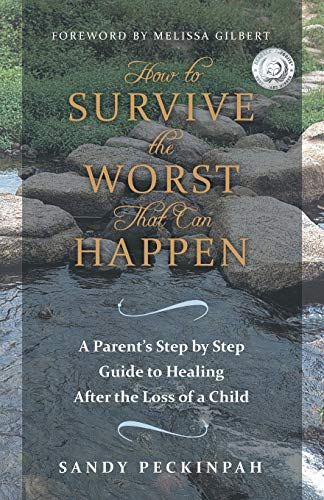 9781452582269: How to Survive the Worst That Can Happen: A Parent's Step by Step Guide to Healing After the Loss of a Child