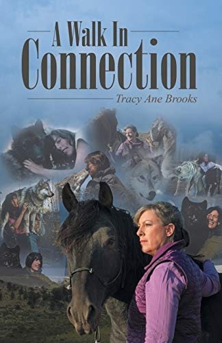 9781452598321: A Walk In Connection