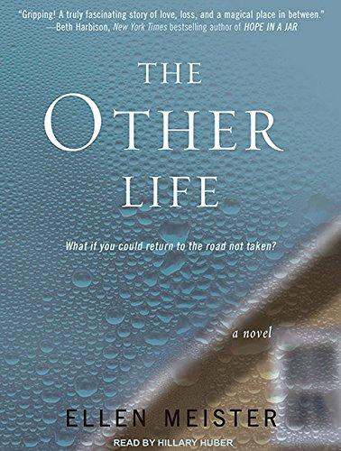 The Other Life: A Novel: Ellen Meister