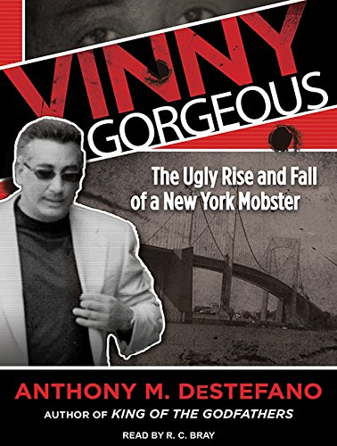 Vinny Gorgeous: The Ugly Rise and Fall of a New York Mobster: Anthony M. DeStefano