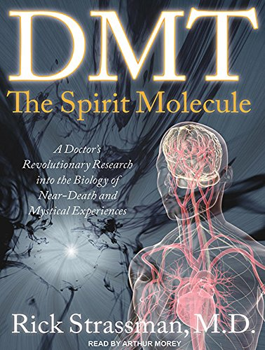 9781452651453: DMT: The Spirit Molecule: A Doctor's Revolutionary Research into the Biology of Near-Death and Mystical Experiences