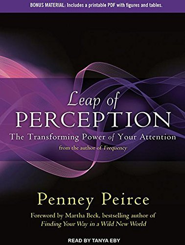 9781452663548: Leap of Perception: The Transforming Power of Your Attention