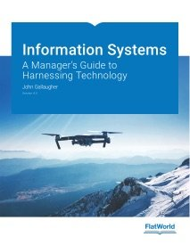 9781453372814: Information Systems: A Manager's Guide to Harnessing Technology, v. 4.0