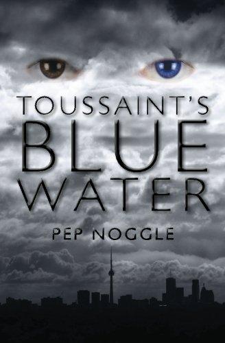 9781453729717: Toussaint's Blue Water