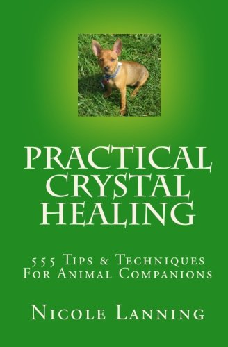 9781453750339: Practical Crystal Healing: 555 Tips & Techniques For Animal Companions