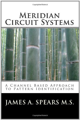 9781453784204: Meridian Circuit Systems: A Channel Based Approach to Pattern Identification
