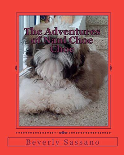 9781453885338: The Adventures of Nani Choe Choe