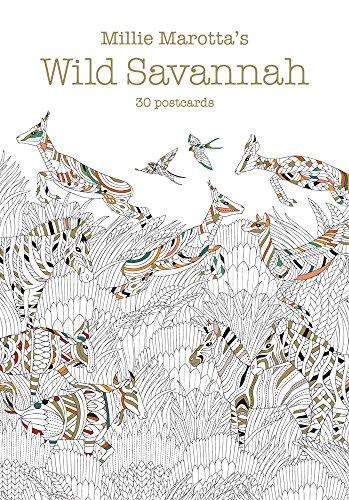 9781454710097: Millie Marotta's Wild Savannah: 30 Postcards