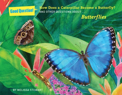 9781454906674: How Does a Caterpillar Become a Butterfly?: And Other Questions About Butterflies (Good Question!)