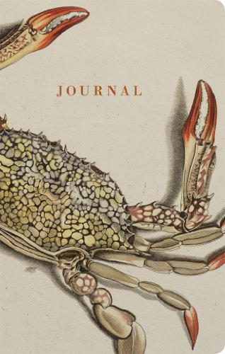 Natural Histories Journal: Crab (American Museum/Natural Hist): American Museum of Natural ...