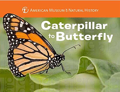 Caterpillar to Butterfly: Melissa Stewart, American Museum of Natural History