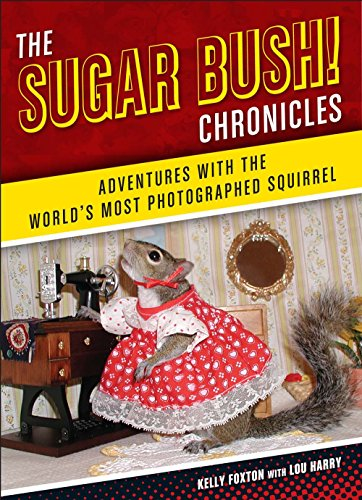 9781454914662: The Sugar Bush Chronicles: Adventures with the World's Most Photographed Squirrel