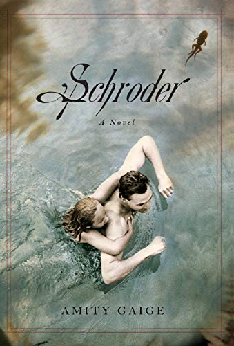 9781455512133: Schroder: A Novel