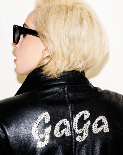 Lady Gaga: Lady Gaga, Terry