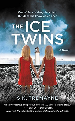9781455571024: The Ice Twins