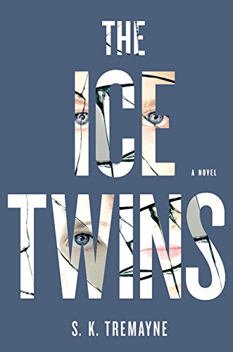 9781455586059: The Ice Twins: A Novel
