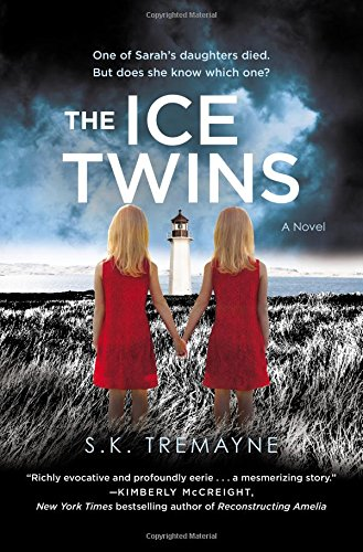 9781455586066: The Ice Twins