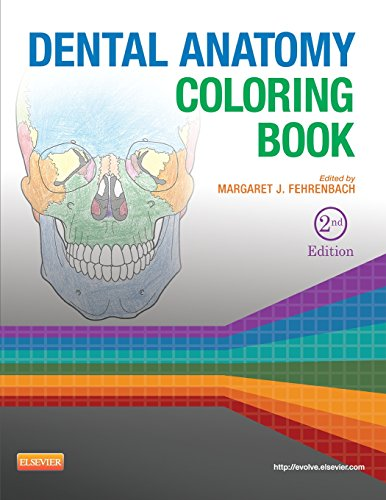 9781455745890: Dental Anatomy Coloring Book, 2e