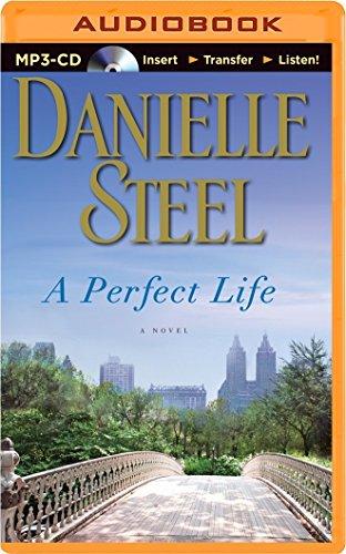 A Perfect Life: Steel, Danielle