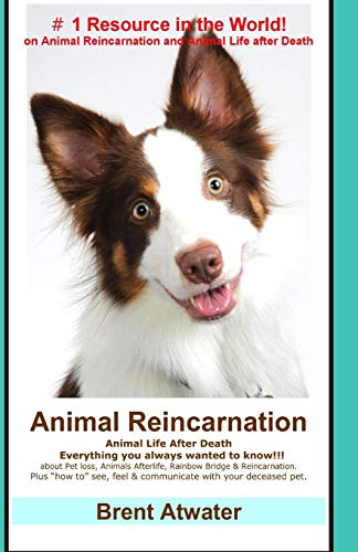 "Animal Reincarnation: Everything You Always Wanted to Know! about Pet Reincarnation Plus """"How To"""" Techniques to See, Feel and Communicate with"