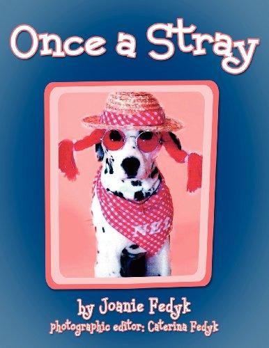 Once A Stray: Joanie Fedyk