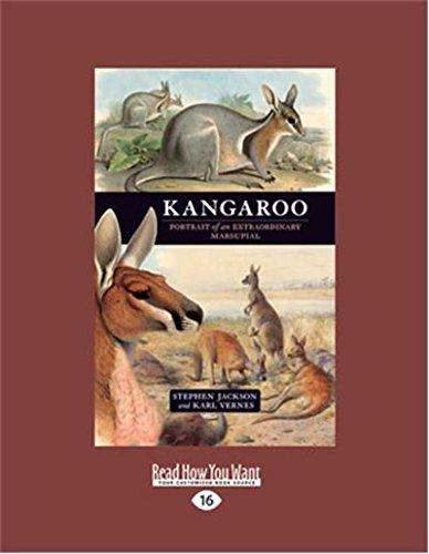 9781459613256: Kangaroo: A portrait of an extraordinary marsupial