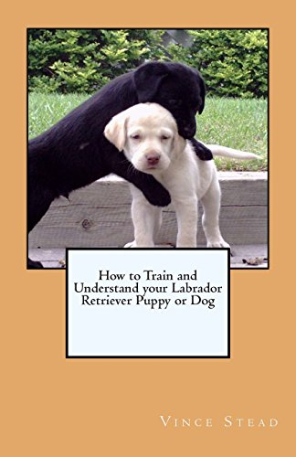 9781460924624: How to Train and Understand your Labrador Retriever Puppy or Dog