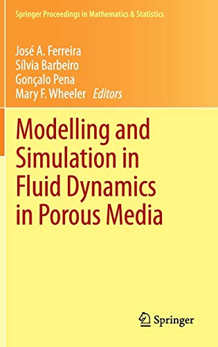 9781461450542: Modelling and Simulation in Fluid Dynamics in Porous Media (Springer Proceedings in Mathematics & Statistics)