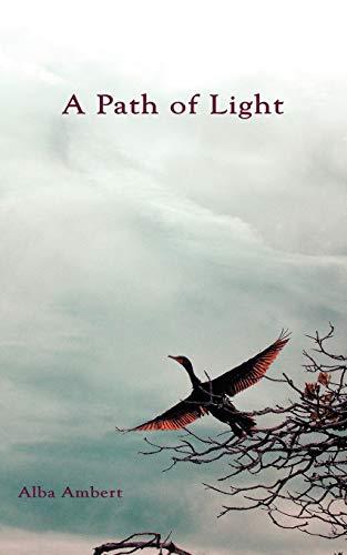 A Path of Light (Paperback): Alba Ambert