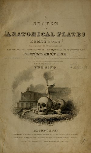 9781462227785: A System of Anatomical Plates: Accompanied With Descriptions, And Physiological, Pathological, And Surgical Observations