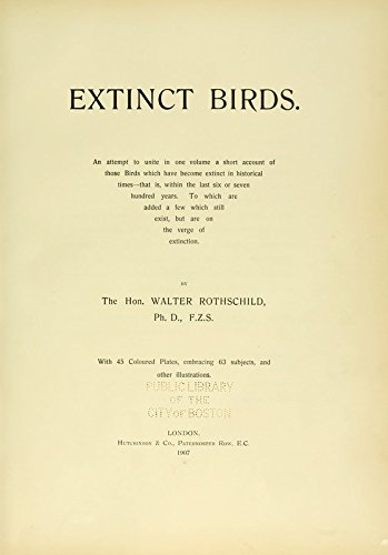9781462283361: Extinct Birds: An Attempt to Unite in One Volume a Short Account of Those Birds Which Have Become Extinct in Historical Times: That Is, Within the Last Six or Seven Hundred Years: To Which Are Added A Few Which Still Exist, But Are on the Verge of Extinction