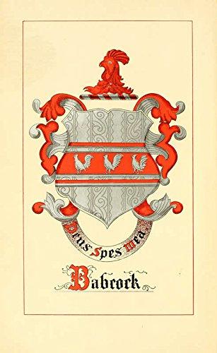 9781462294398: Babcock Genealogy