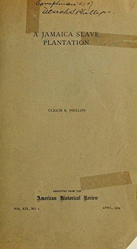 9781462296200: A Jamaica Slave Plantation