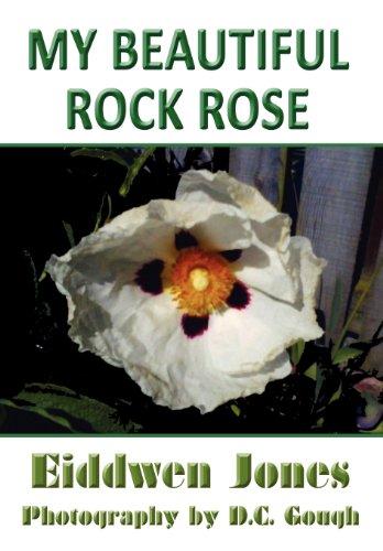 My Beautiful Rock Rose: Eiddwen Jones