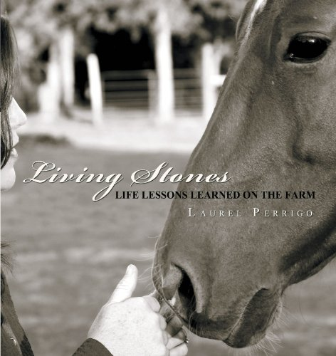 9781462706549: Living Stones: Life Lessons Learned on the Farm