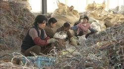 9781463110239: The Trash Trade: Selling Garbage to China - Educational Version with Public Performance Rights