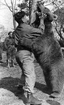 9781463115555: Wojtek: The Bear That Went to War - Educational Version with Public Performance Rights