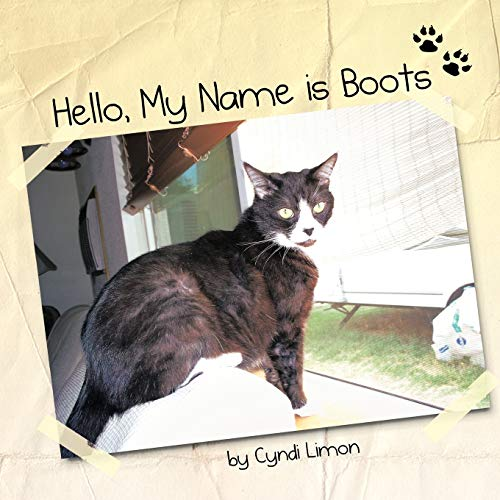 9781463436704: Hello, My Name Is Boots