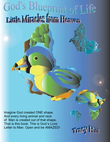 9781463535964: God's Blueprint of Life: Little Miracles from Heaven