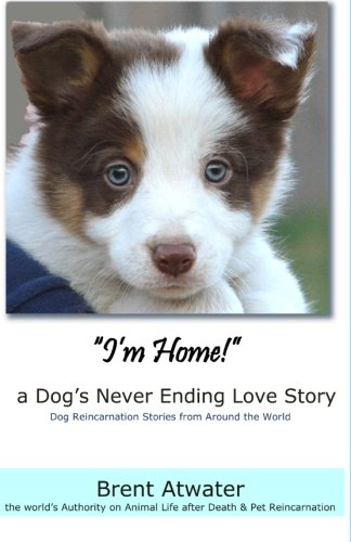 I'M Home! - A Dog's Never Ending Love Story