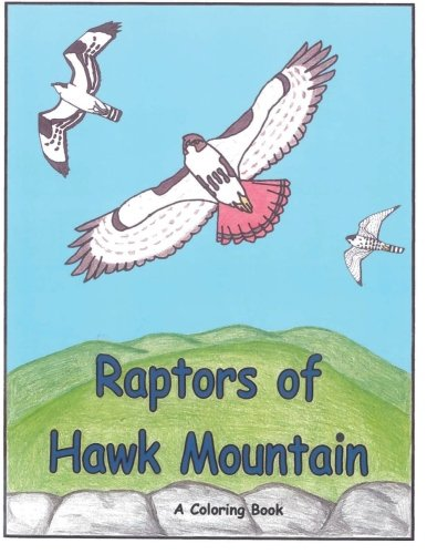 9781463719562: Raptors of Hawk Mountain A Coloring Book