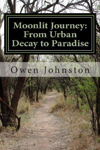 9781463737313: Moonlit Journey: A Dimly Lit Quest through Urban Decay