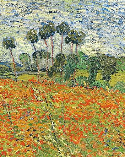 Raven Biology of Plants: International Edition: Ray F. Evert