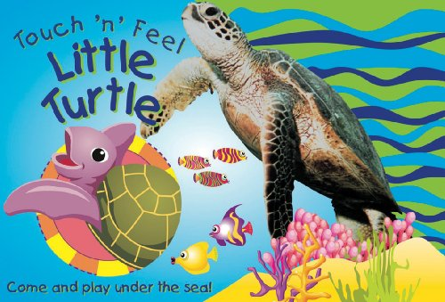 Touch 'n' Feel Little Turtle: Come and: The Book Company
