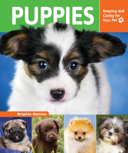 9781464403057: Puppies: Keeping and Caring for Your Pet