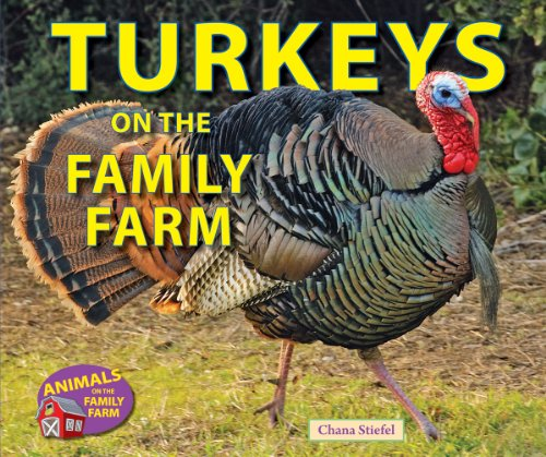 Turkeys on the Family Farm (Animals on the Family Farm): Stiefel, Chana
