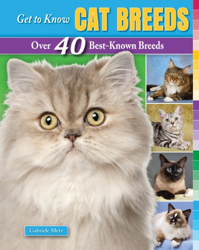 9781464404634: Get to Know Cat Breeds: Over 40 Best-Known Breeds (Get to Know Cat, Dog, and Horse Breeds)