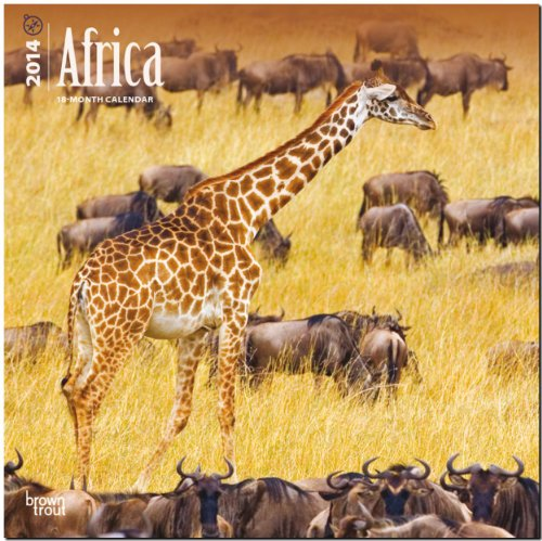 9781465008831: Africa Calendar (Multilingual Edition)