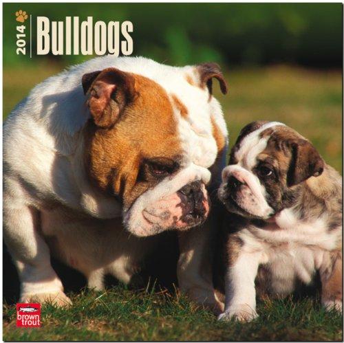 9781465009555: Bulldogs 2014 Wall Calendar